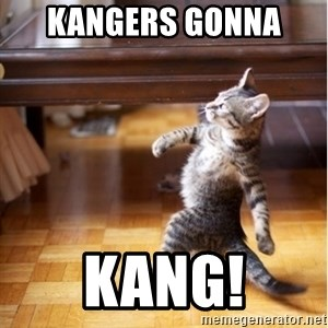 haters gonna hate cat - Kangers gonna  kang!