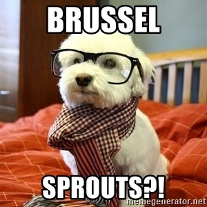 hipster dog - brussel sprouts?!