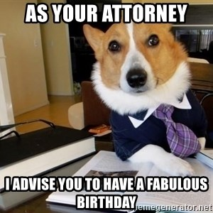 Dog Lawyer - As your attorney  I advise you to have a fabulous birthday