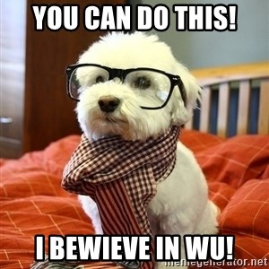 hipster dog - You can do this! I bewieve in WU!