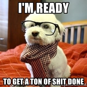 hipster dog - I'm READY to get a ton of shit done