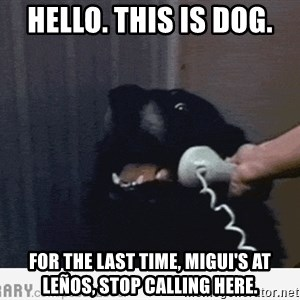 Hello This is Dog - Hello. This is dog. For the last time, Migui's at Leños, STOP calling here.