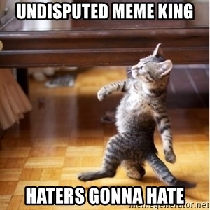 haters gonna hate cat - undisputed meme king haters gonna hate