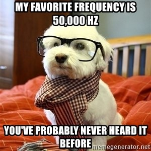 hipster dog - My favorite frequency is 50,000 Hz You've probably never heard it before
