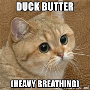 motherfucking game cat - Duck butter (Heavy breathing)