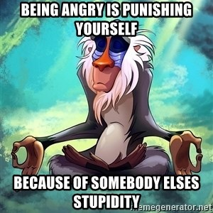 Wise Rafiki - BEING ANGRY IS PUNISHING YOURSELF BECAUSE OF SOMEBODY ELSES STUPIDITY