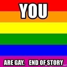 You're Probably Gay - you are gay.    end of story