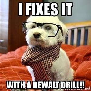hipster dog - I fixes it With a dewalt drill!!