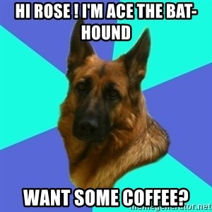 German shepherd - Hi rose ! I'm ace the bat-hound  Want some coffee?
