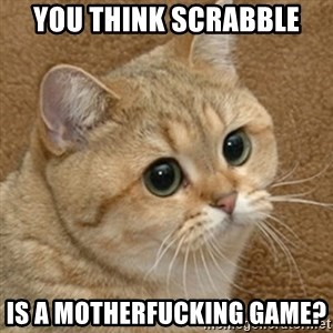 motherfucking game cat - You think scrabble Is a motherfucking game?