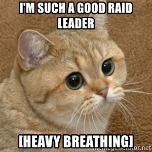 motherfucking game cat - i'm such a good raid leader [heavy breathing]