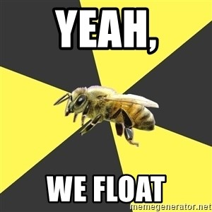 British High School Honeybee - Yeah, we float