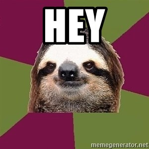 Just-Lazy-Sloth - hey