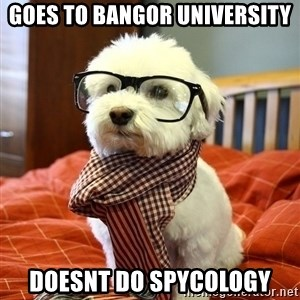 hipster dog - Goes to bangor university Doesnt do spycology