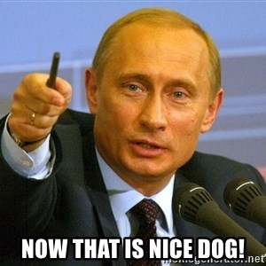 Give that man a cookie Putin -  now that is nice dog!