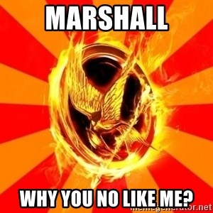 Typical fan of the hunger games - Marshall why you no like me?