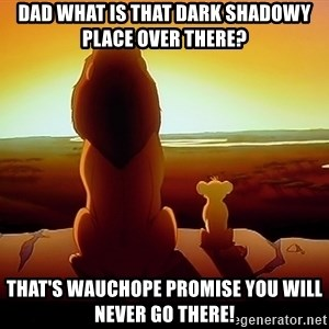 simba mufasa - Dad What is that Dark shadowy Place over there? That's wauchope promise you will never go there!