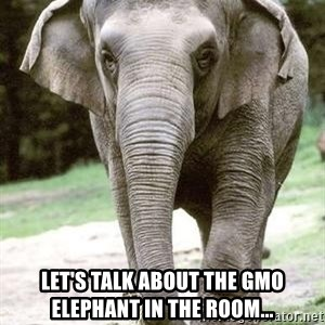Eating Disordered Elephant  -  Let's talk about the gmo elephant in the room...