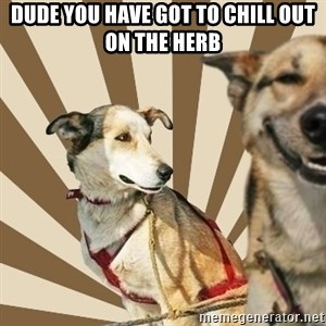 Stoner dogs concerned friend - dude you have got to chill out on the herb