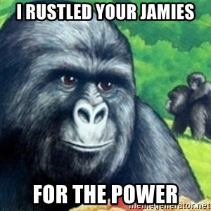 Jimmies Rustled - I rustled your jamies for the power