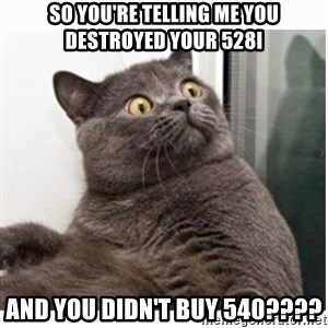 Conspiracy cat - so you're telling me you destroyed your 528I and you didn't buy 540????