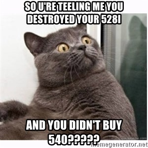 Conspiracy cat - So u're teeling me you destroyed your 528i And you didn't buy 540?????