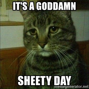 Depressed cat 2 - It's a goddamn SHEETY DAY
