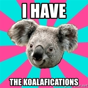 Koala Roleador - I HAVE THE KOALAFICATIONS