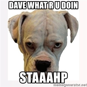 stahp guise - Dave what r u doin staaahp