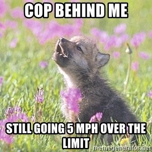 Baby Insanity Wolf - cop behind me still going 5 mph over the limit