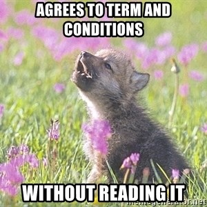 Baby Insanity Wolf - Agrees to term and conditions Without reading it