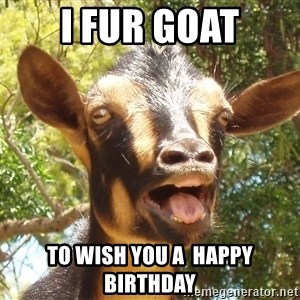 Illogical Goat - I Fur Goat to wish you a  happy birthday