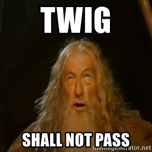 Gandalf You Shall Not Pass - TWIG SHALL NOT PASS
