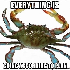 Boss Crab - Everything is going according to plan