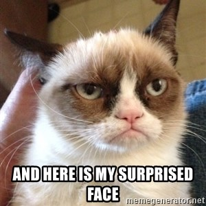 Grumpy Cat 2 -  ANd here is my surprised face