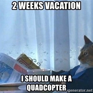 Sophisticated Cat - 2 weeks Vacation I should Make a quadcopter