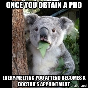 Koala can't believe it - Once you obtain a phd Every meeting you attend becomes a doctor's appointment