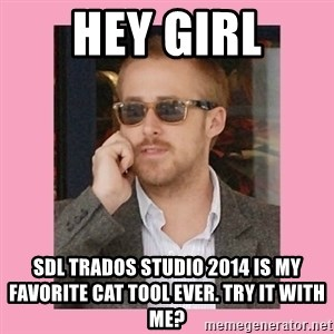 Hey Girl - Hey girl sdl trados studio 2014 is my favorite cat tool ever. try it with me?