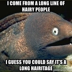 Bad Joke Eel v2.0 - I come from a long line of hairy people I guess you could say it's a long hairitage