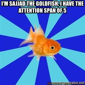 Absentminded Goldfish - I'm sajjad the goldfish, I have the attention span of 5
