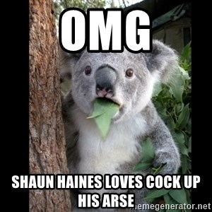 Koala can't believe it - OMG Shaun Haines loves cock up his arse