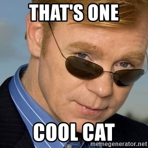 Horatio Caine - That's one cool cat