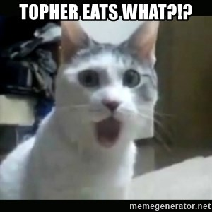 Surprised Cat - TOPHER EATS WHAT?!?