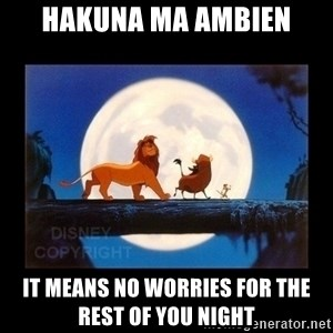 Hakuna Matata - Hakuna Ma Ambien It means no worries for the rest of you night