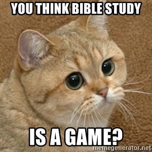 motherfucking game cat - YOu think Bible Study is A game?