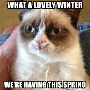 Grumpy Cat Happy Version - What a lovely winter We're having this spring
