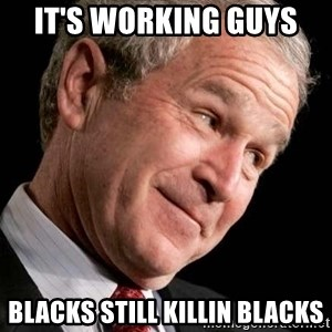 George Bush Junior - It's working guys  Blacks still killin blacks