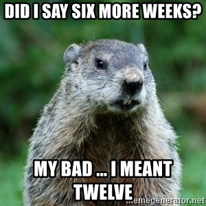 grumpy groundhog - DID I SAY SIX MORE WEEKS?  MY BAD ... I MEANT TWELVE
