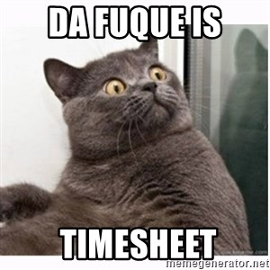 Conspiracy cat - Da Fuque Is  TIMESHEET