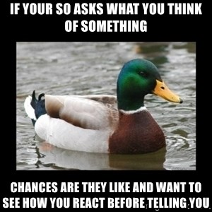 advice mallard - If your SO asks what you think of something Chances are they like and want to see how you react before telling you